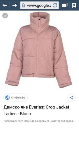 Яке Everlast розова Пудра Късо uk14 ХЛ