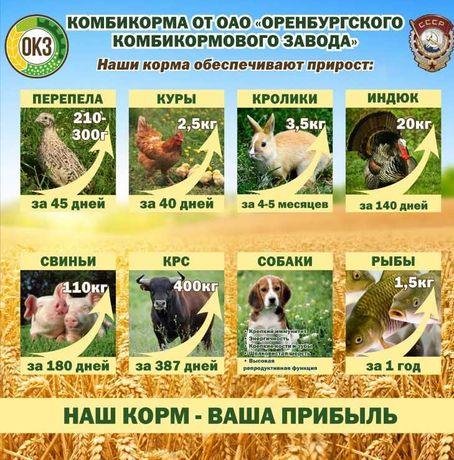 Комбикорм ТОЛЬКО ОПТОМ  для всех видов С/х животных