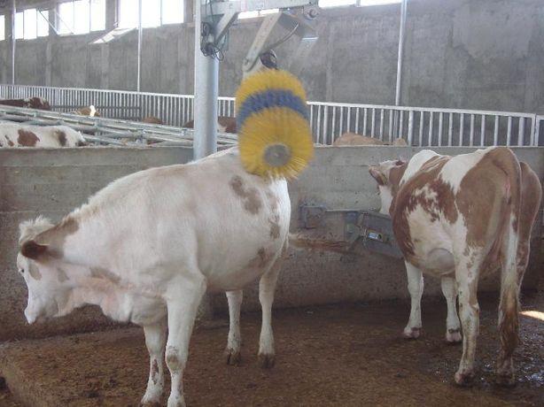 Perie automată scărpinare vaci - CONFORT - SĂNĂTATE - PRODUCȚIE LAPTE