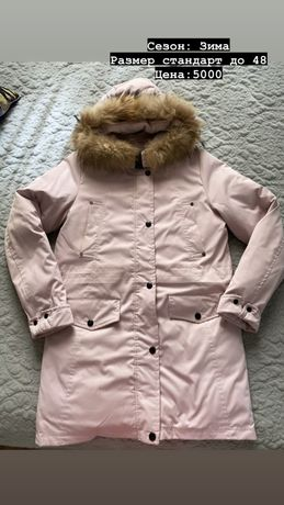Куртки , ветровки, безрукавки, пальто на осень и зиму