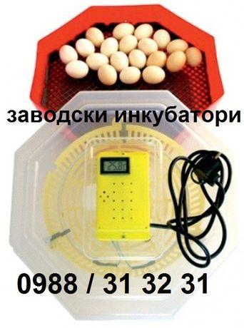 Заводски инкубатор за пилета. Инкубатори за яйца с дисплей .
