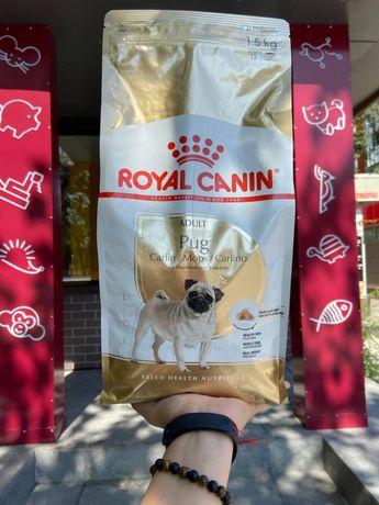 Корм для Мопсов Royal Canin