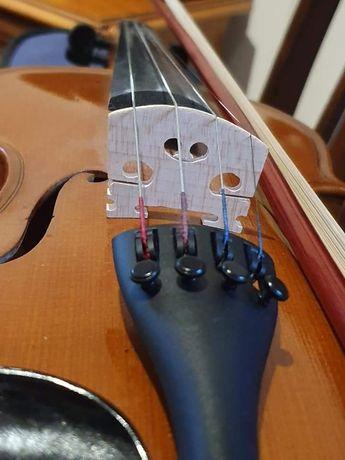 Lecții de vioara, pian și teoria muzicii