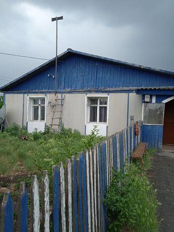 Продам дом в с. Шаховское