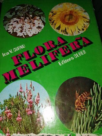 Ion V.Carnu-Flora melifera/{apicultura-stuparit,stuparitul,albine}