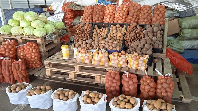 Картошка морковь лук капуста свежая свекла