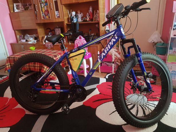 Bicicleta unica