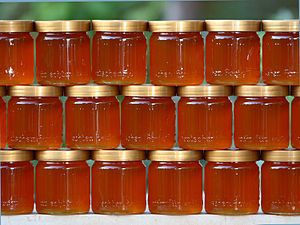 Vind miere si faguri cu miere prisaca propie.