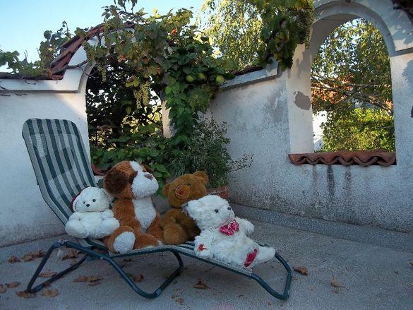 Плюшени мечета и фъкано куче
