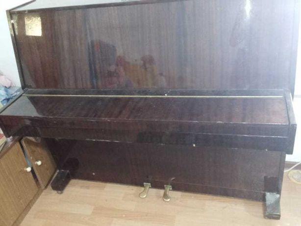 Пианино для учёбы LIRIKA