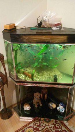 Рибки Гупи, аквариум 350 бр нов ак 160 лт