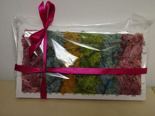 Aranjament tablou licheni