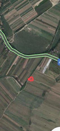 Teren extravilan in Mihailesti,judetul Giurgiu 4850m2