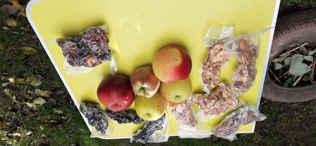 Vând poame de mere si prune uscate si vidate.