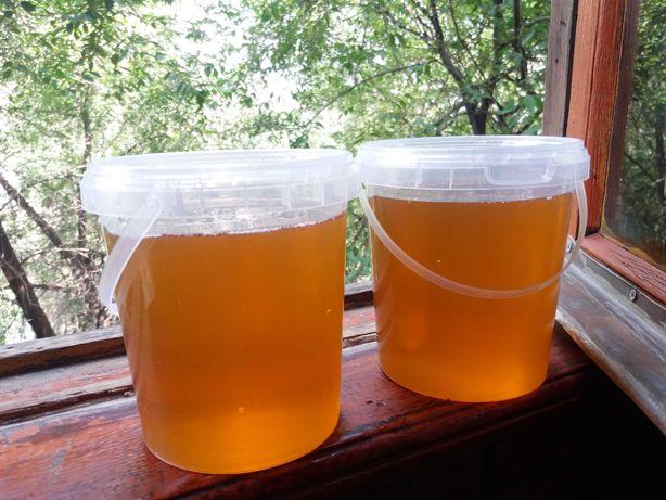 Мёд из Мерке: Жантақ, Шалфей, Солнечный, Подсолнух, Цветочный