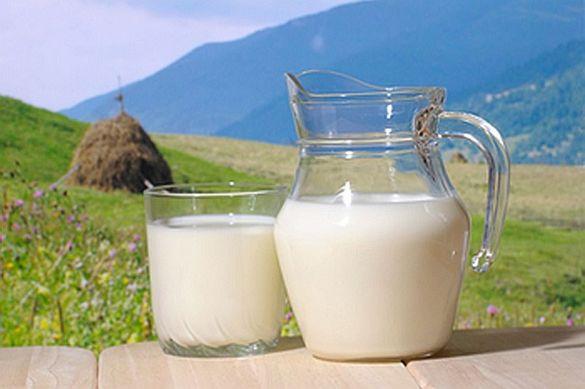 Домашно краве мляко