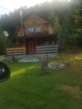 Vand Casa de vacanta -  Coada Lacului - Lesu, Remeti