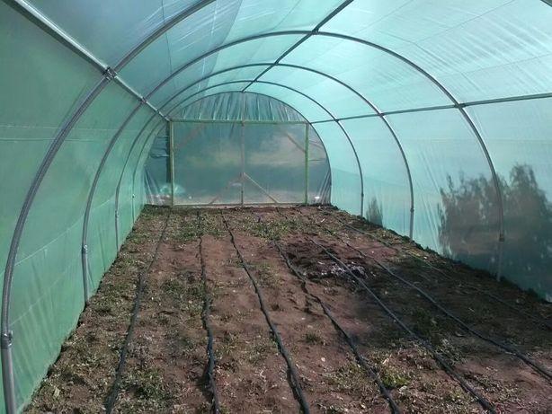 Solar pentru legume 6/4/2,5 m