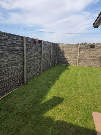 Gard Beton Placi