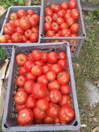 Продам помидоры.