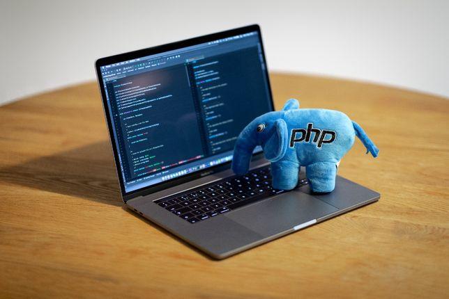 Proiecte informatica C, C++, Java, Web, programare online