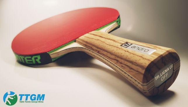 Paleta tenis de masa( ping pong) ligna/rasanter