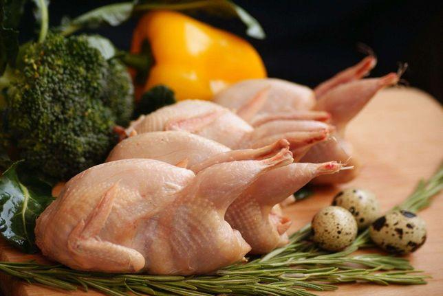 Бөдене еті. Мяса перепелов