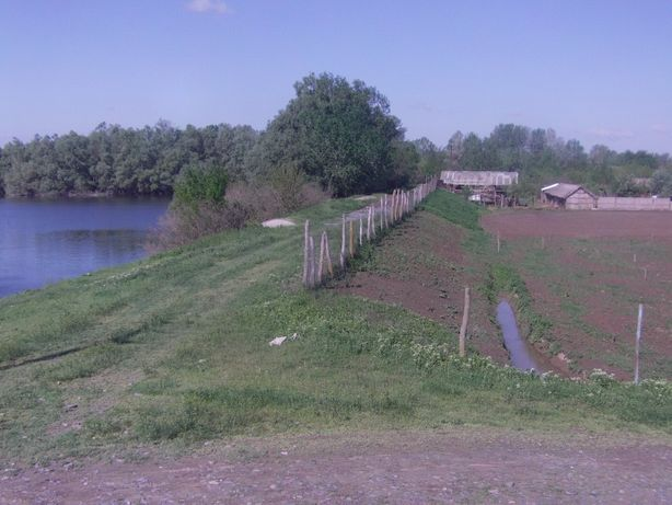 Teren Delta Dunării, SRL și Business Plan la cheie, Pardina
