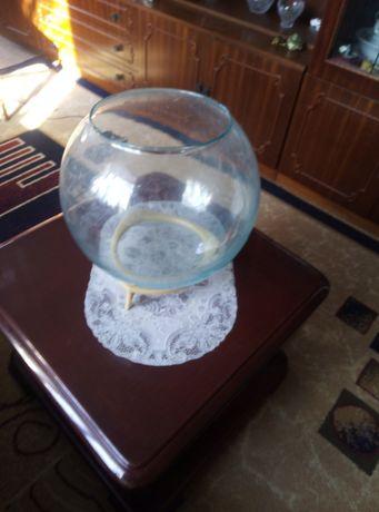 Аквариум шаровидный (круглый)