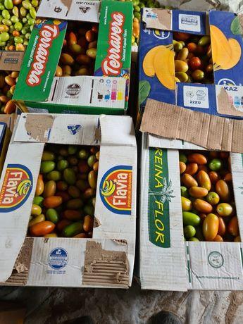 Продам помидоры зелёные, бурые,красные.