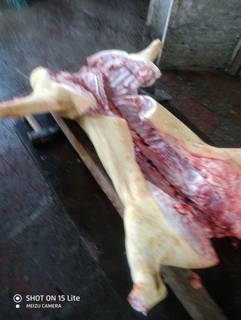 Продам домашнее  мясо свинина, а так же соленое сало