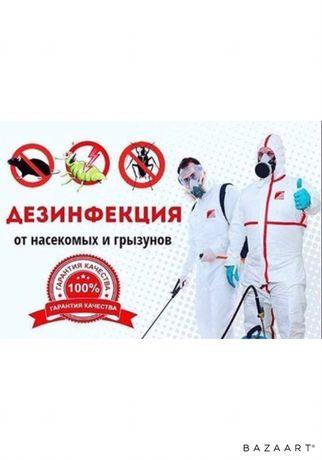 Дезинфекция клопов термитов + 3 АКЦИИ