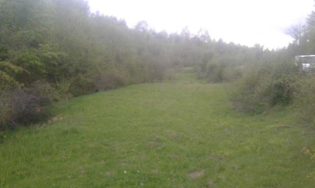 Vand un superb teren pentru cabana in zona montana, cu acte la zi, CF