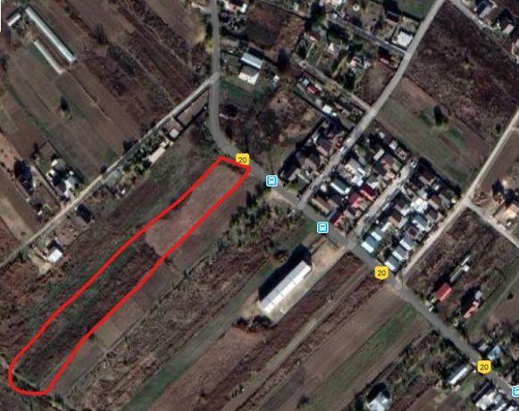 Vând teren in Dumitrana