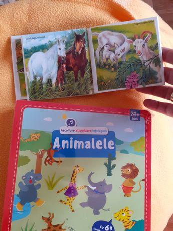 set de 2 carti carticele în romana carte sunete animale