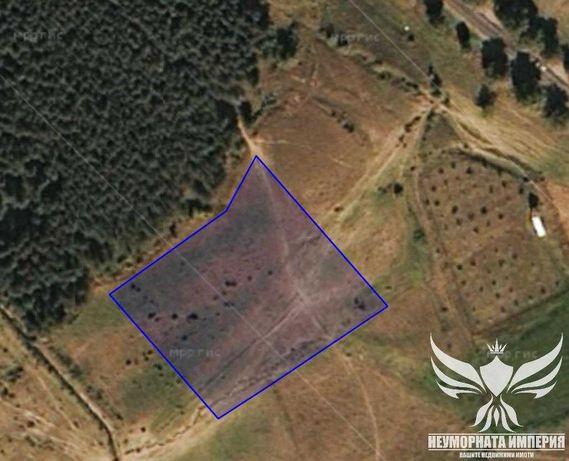 Продавам земеделска земя 4500кв.м. в с. Долнослав, общ. Асеновград