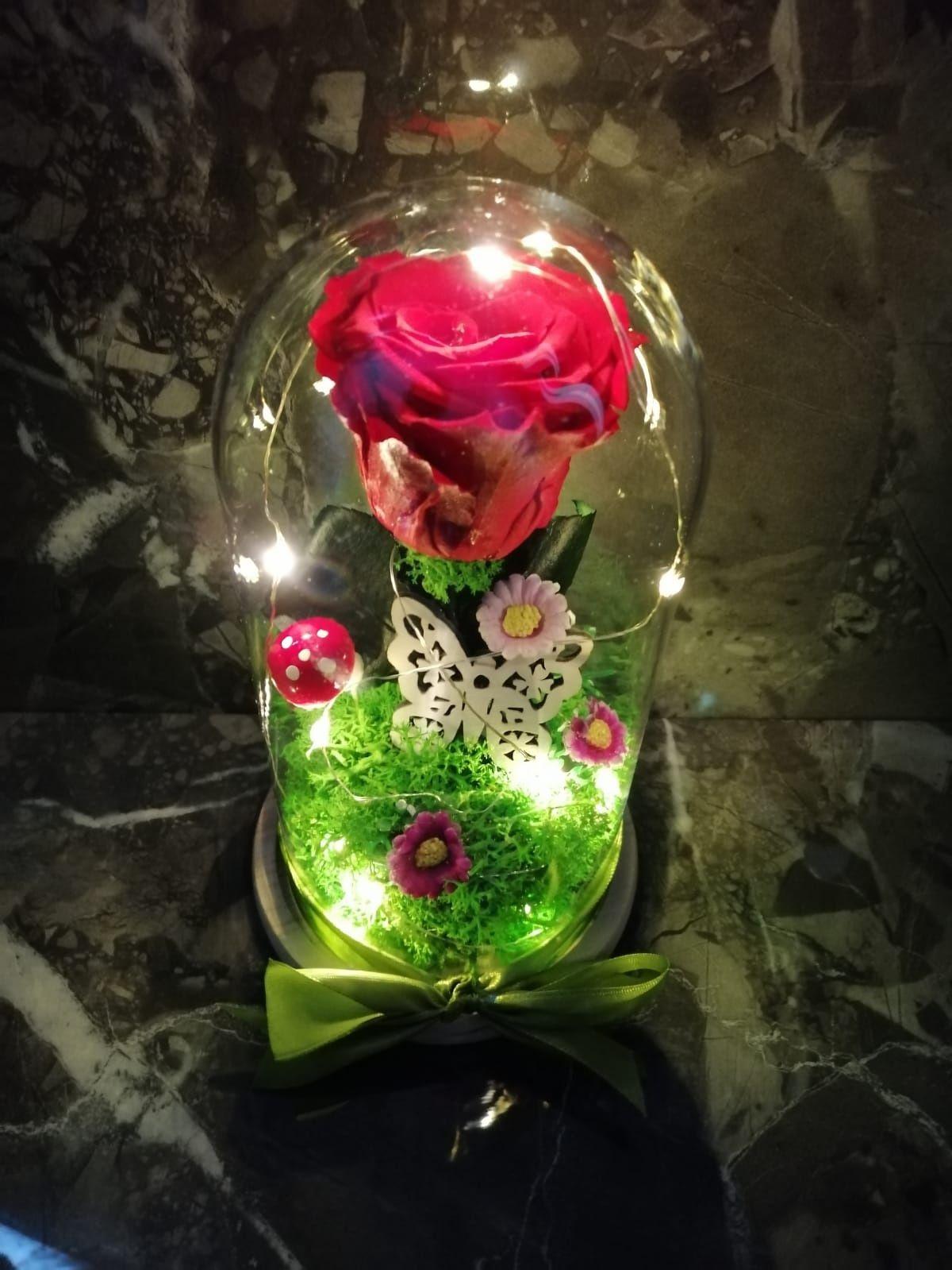 Trandafiri criogenati în cupola cu leduri ideea perfectă