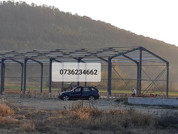 Vand/Schimb Hala pe Structura metalică 12x25x4 cu panouri sandwich 18.