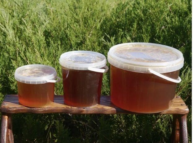Продаем Мёд Натуральный  с ВКО