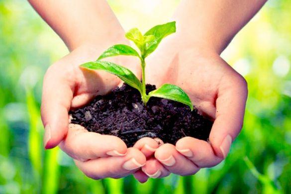 Курс по растителна защита
