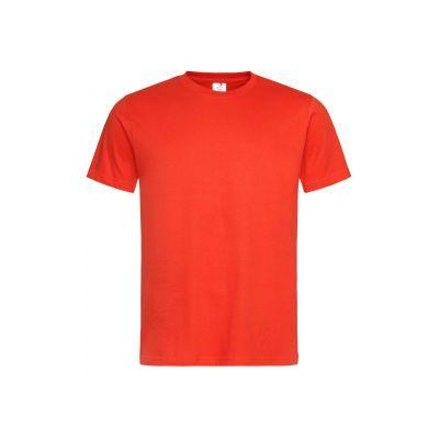Памучни тениски на едро