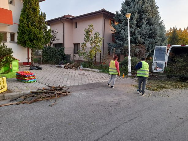 Tăiere copaci Curățare gradina insmantare gazon plantati