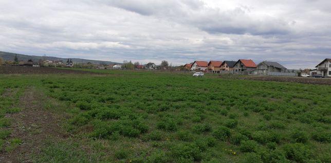 De vanzare doua terenuri extravilane la Ungheni