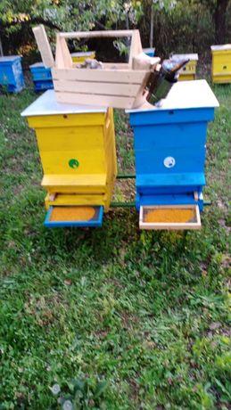 Пчелен прашец  билков - реколта 2021 Пчелен мед клеева тинктура
