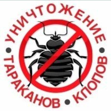 Акция 20%! Уничтожение насекомых и грызунов