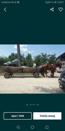 Se vinde cai cu caruta