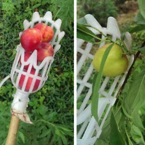 Dispozitiv cules fructe la inaltime mare. Fara scara!