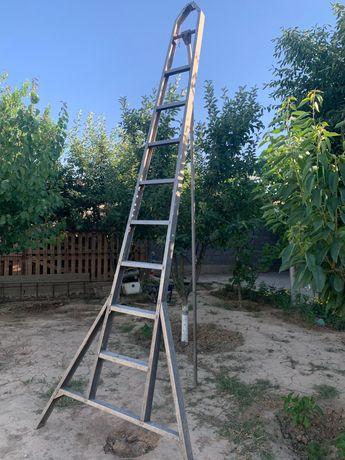 Стремянка-Лестница, Саты.