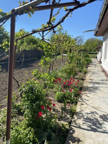 Casa Calarasi sat calarasi vechii
