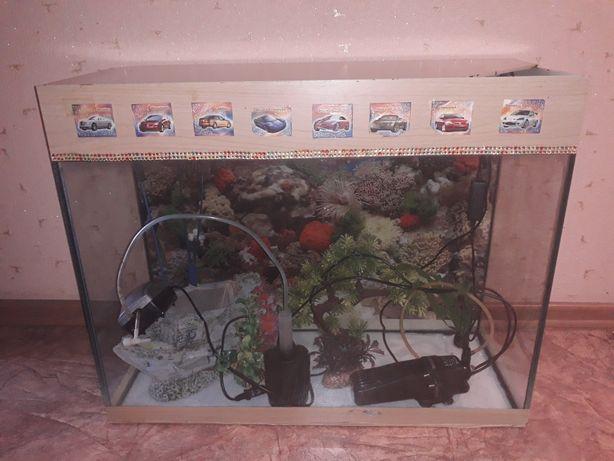 Продам аквариум 60л с рыбками и со всеми принадлежностями.
